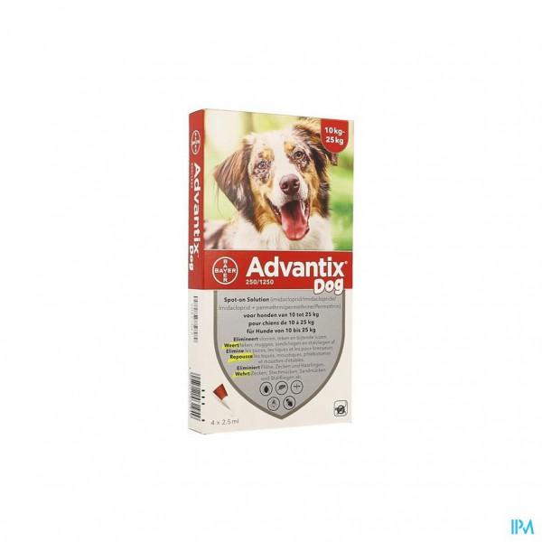 ADVANTIX 250/1250 HONDEN 10<25KG FL 4X2,5ML